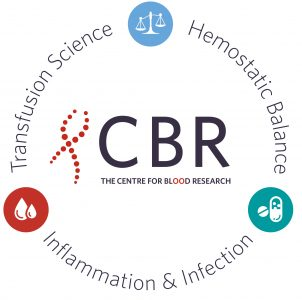 Themes that form the pillars of the CBR