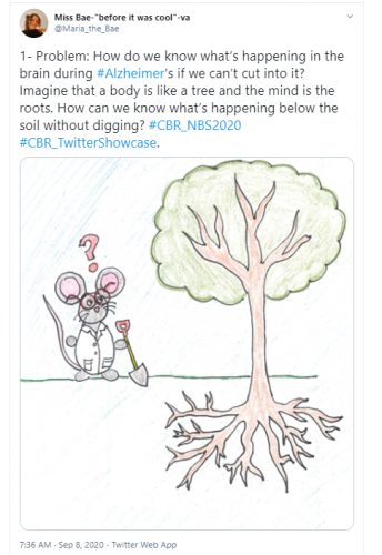 Twitter Research Showcase Thread by showcase winner Maria-Elizabeth Baeva. The thread reads: 1- Problem: How do we know what's happening in the brain during #Alzheimer's if we can't cut into it? Imagine that a body is like a tree and the mind is the roots. How can we know what's happening below the soil without digging? #CBR_NBS2020 #CBR_TwitterShowcase