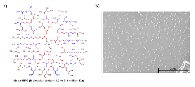 Figure 1: a) Chemical Structure of hyperbranched polyglycerols (HPG) b) Cryo-electron microscopy of mega-HPGs