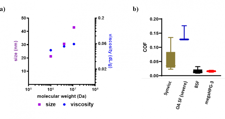 Figure 2: a) Size and viscosity comparisons of mega-HPGs. b) Box and whisker plot of friction coefficient comparisons. Synvisc is a synthetic lubricant used in osteoarthritis. Error bars represent maximum and minimum measurements. Abbreviations: OA SF = osteoarthritic synovial fluid; BSF = bovine synovial fluid; megaHPG-3 = 3 million Dalton HPG.